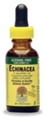 Nature's Answer Liquid Echinacea, 1fl. oz.