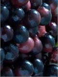 Real Acai Berries